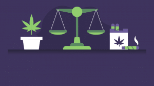 Health Pros and Cons of Weed (Infographic)
