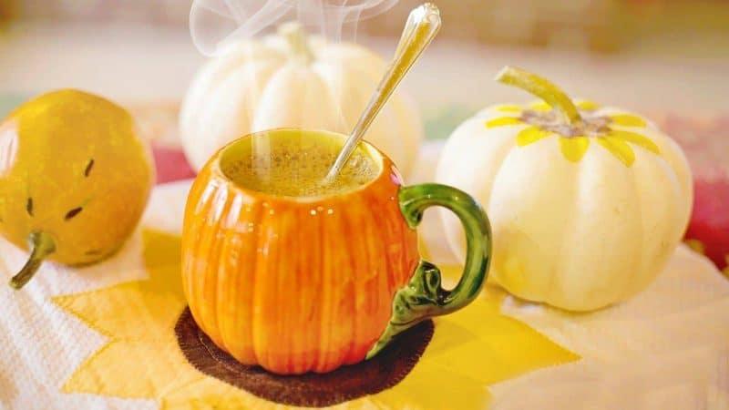 Lifestyle News - Pumpkin Spice
