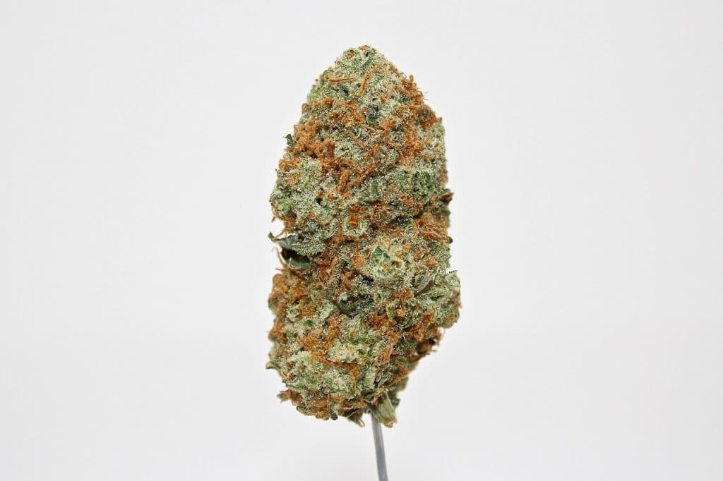 Weed Strains - Hybrid