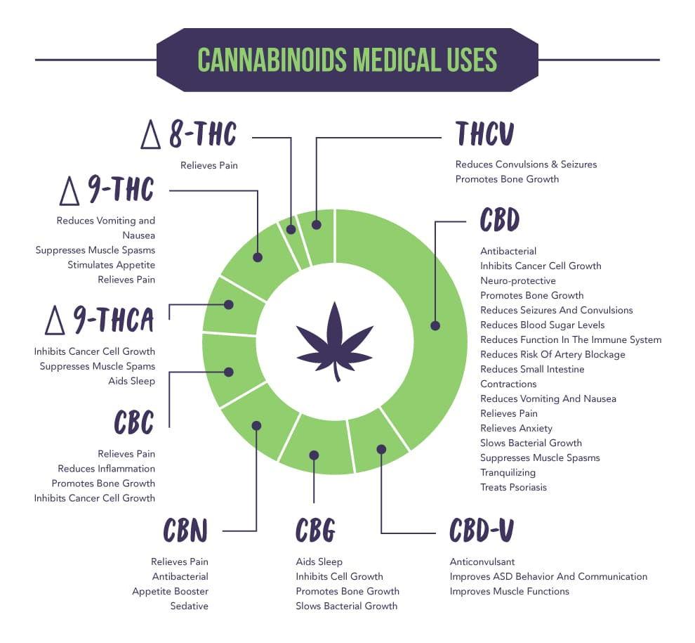 What Are Cannabinoids - Chart