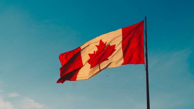 Industry News - Canada Stocks Plummet