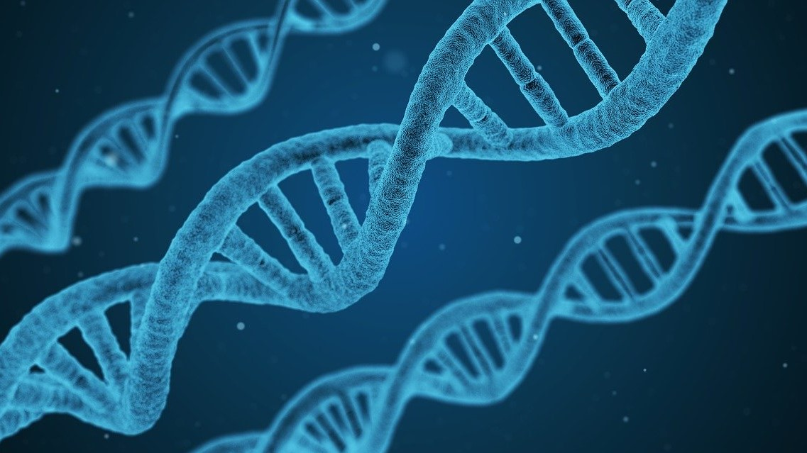 Industry News - Genetically Modified Cannabis