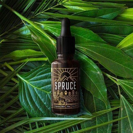 Best CBD Oil for Pain - Spruce CBD Oil for Pain