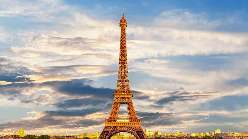 Politics News - France Fines