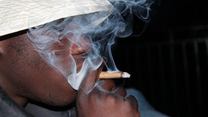Politics News - Cannabis Smell