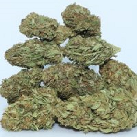 Best CBD Flower - Dr. Ganja
