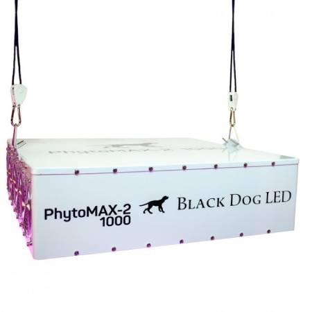 Best LED Grow Lights - Black Dog