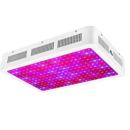 Best LED Grow Lights - Morsen