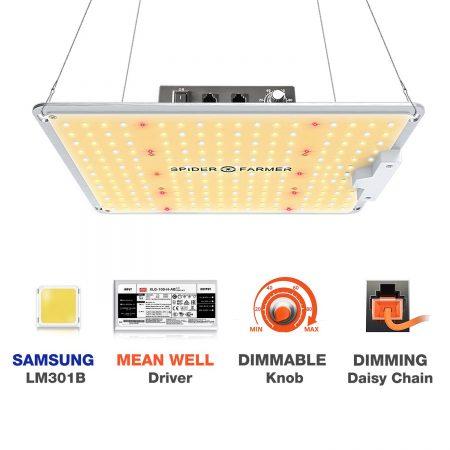 Best LED Grow Lights - Spider