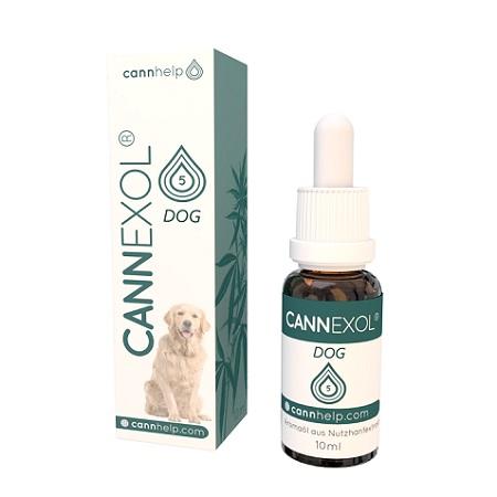 Bestes CBD Öl für Hunde - Cannhelp im Test
