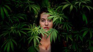 50 Fabulous Marijuana Facts You Had No Idea About