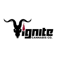 Ignite Review