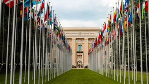Cannabis Reclassified as Less Dangerous Drug by the UN