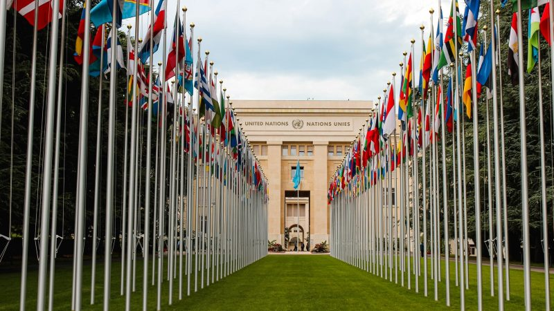 Politics News - Cannabis Reclassified as Less Dangerous Drug by the UN