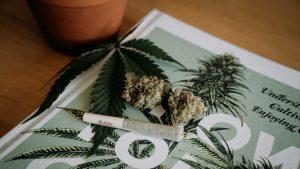 Tasmanians Soon to Get Medical Cannabis Without Prescription