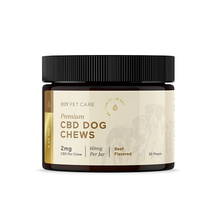 Best CBD Dog Treats - Joy Organics Review