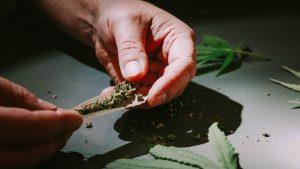 New Jersey Finally Legalizes Recreational Marijuana