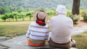 Studies Show Cannabis Improves Memory Among the Elderly