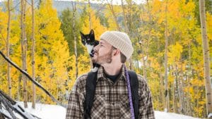 Best CBD Oil for Cats Canada Has to Please Fussy Felines