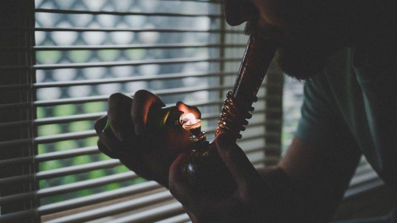 Politics News - Morocco Legalizes Therapeutic Cannabis Use in Landslide Vote